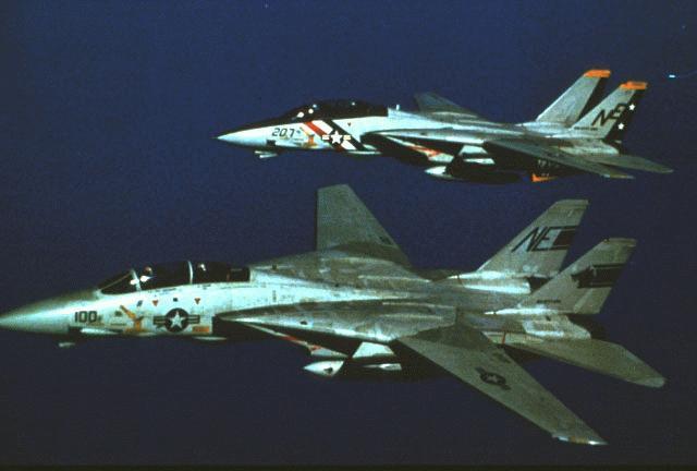 "La VERITABLE ""VF-1"" F14a1ae"
